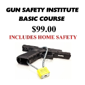 GUN SAFETY INSTITUTE (Basic Firearms Training & Home Safety)